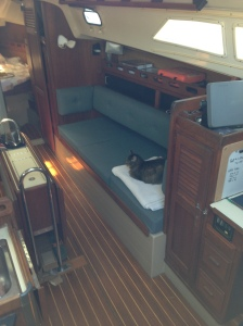 leo, chillin', under sail!