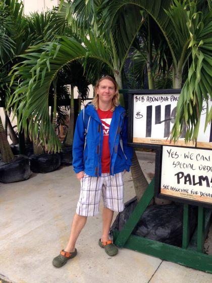 Palm trees at Homer D!