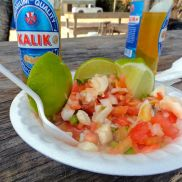 We ordered conch salad from Stuart's. Although it looks super tasty, and the tomato, onion, lime mixture was, the conch was not for us. It was kinda' chewy and crunchy, and icky. We did get conch fritters a few days later and those were yummy.