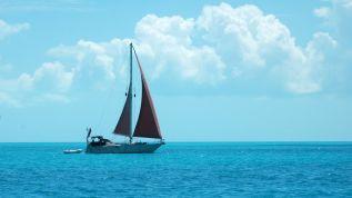 anth 2 sails
