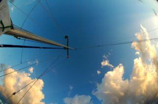 mast wide