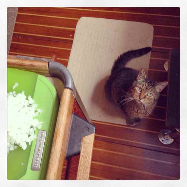 Chopping onions = Tuna, duh.