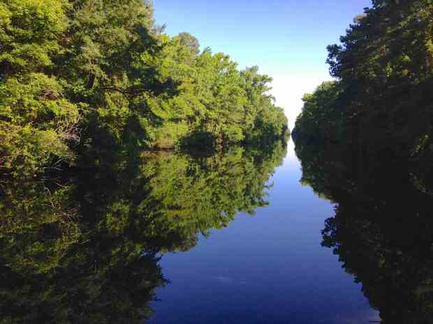 The beautifully calm Dismal Swamp Canal.